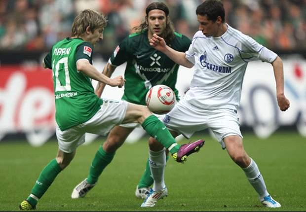 Werder Bremen 1-1 Schalke: Edu strike cancels out Wagner's opener